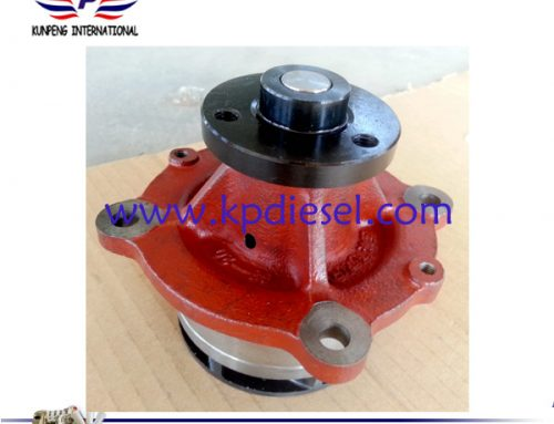 Deutz Diesel Engine Water Pump