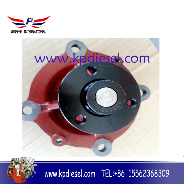 Deutz 6FM1015 waterpump 130015a52D