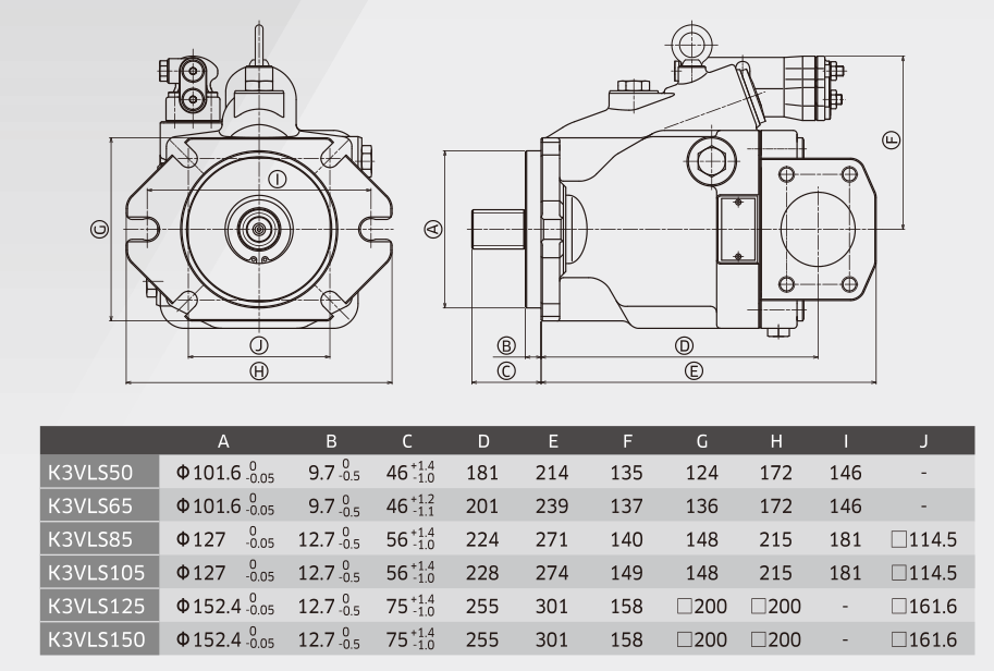 Hydraulic pump feature And Specifications